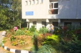 Озеленяване и цветарство